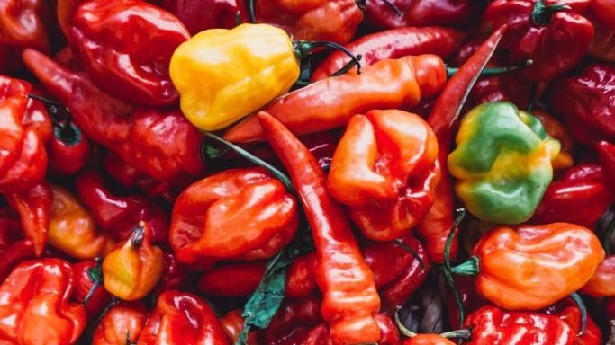 No sweat – how to enjoy spicy cuisine like a pro